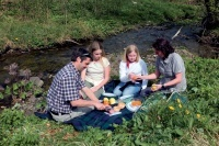 Picknick am Bach in Willingen